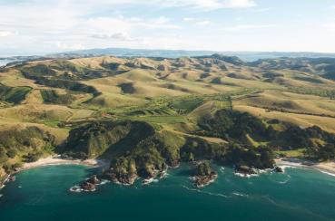 Man O War Vineyards | Waiheke.co.nz