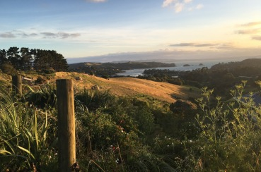 Walking by Nature | Waiheke.co.nz